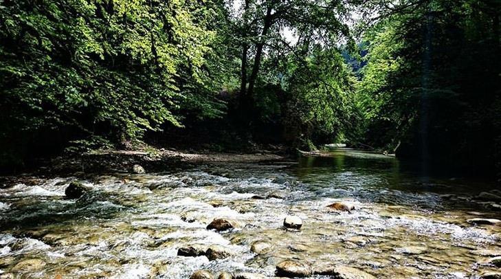 رودخانه جنگل جیغ مشهد - طرقبه
