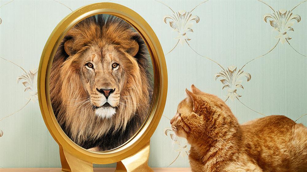 عزت نفس یعنی چیزی فراتر در خود را دیدن و خود را با ارزش دانستن