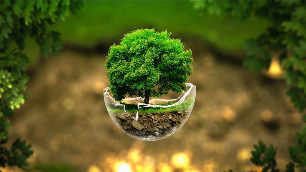 محیط زیست مانند خانه ماست