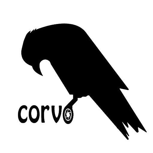 استودیو کروو Corvo