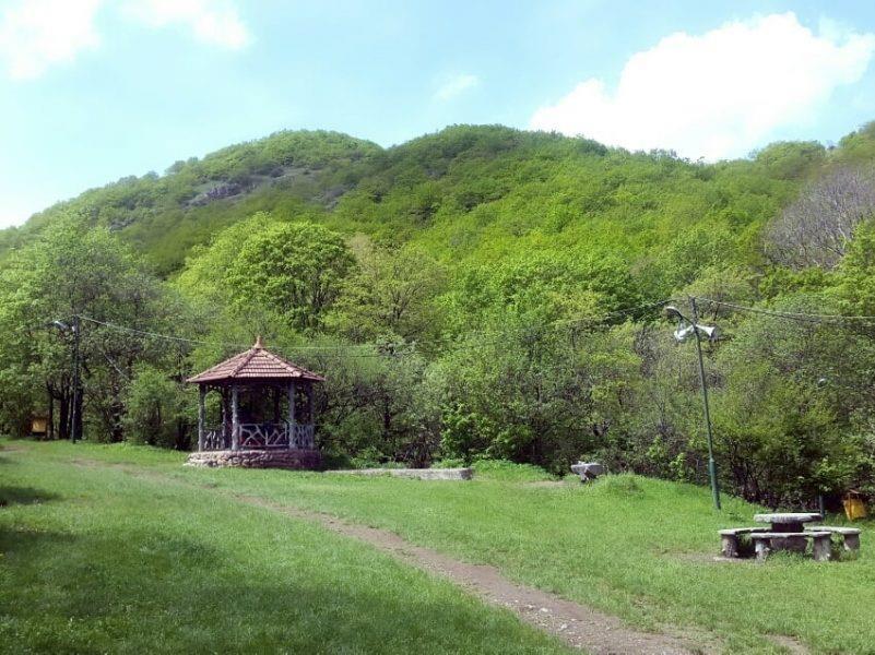 پارک جنگلی مکیدی