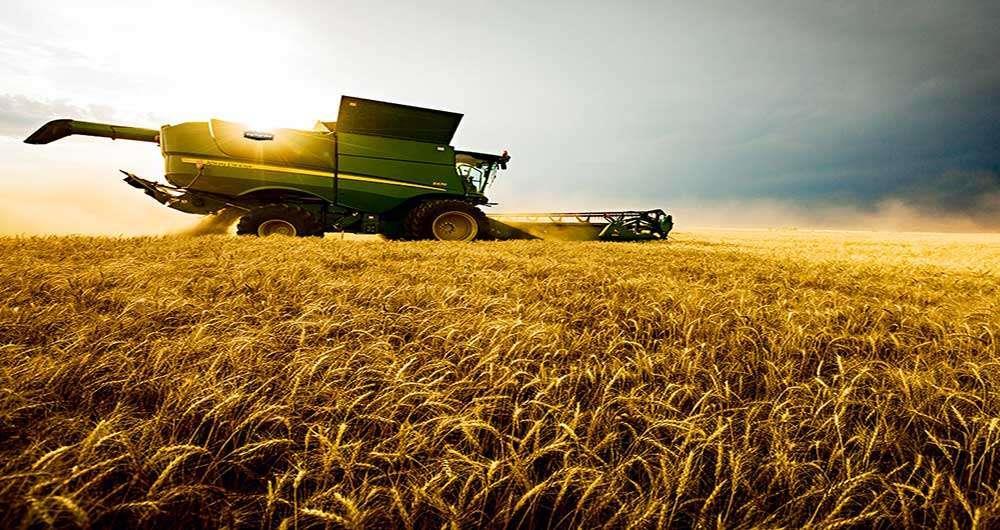 صنایع غذایی و کشاورزی